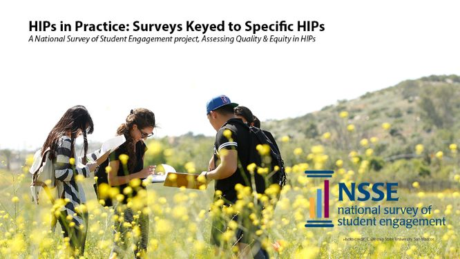 Introducing HIPs in Practice: A Pilot Survey Project